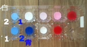 色水遊び 青のグラデーション