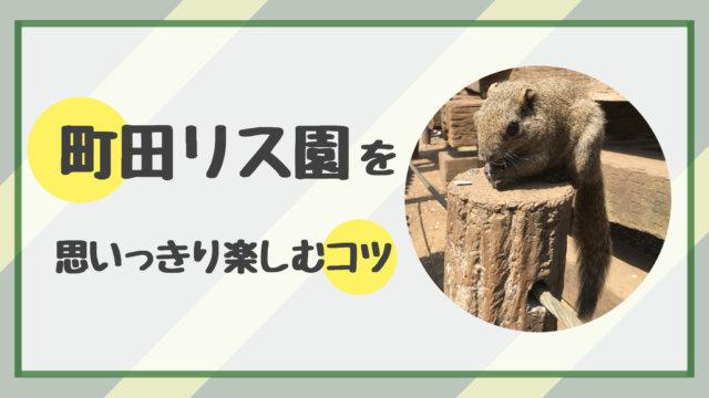 町田リス園 ハハトコタイム